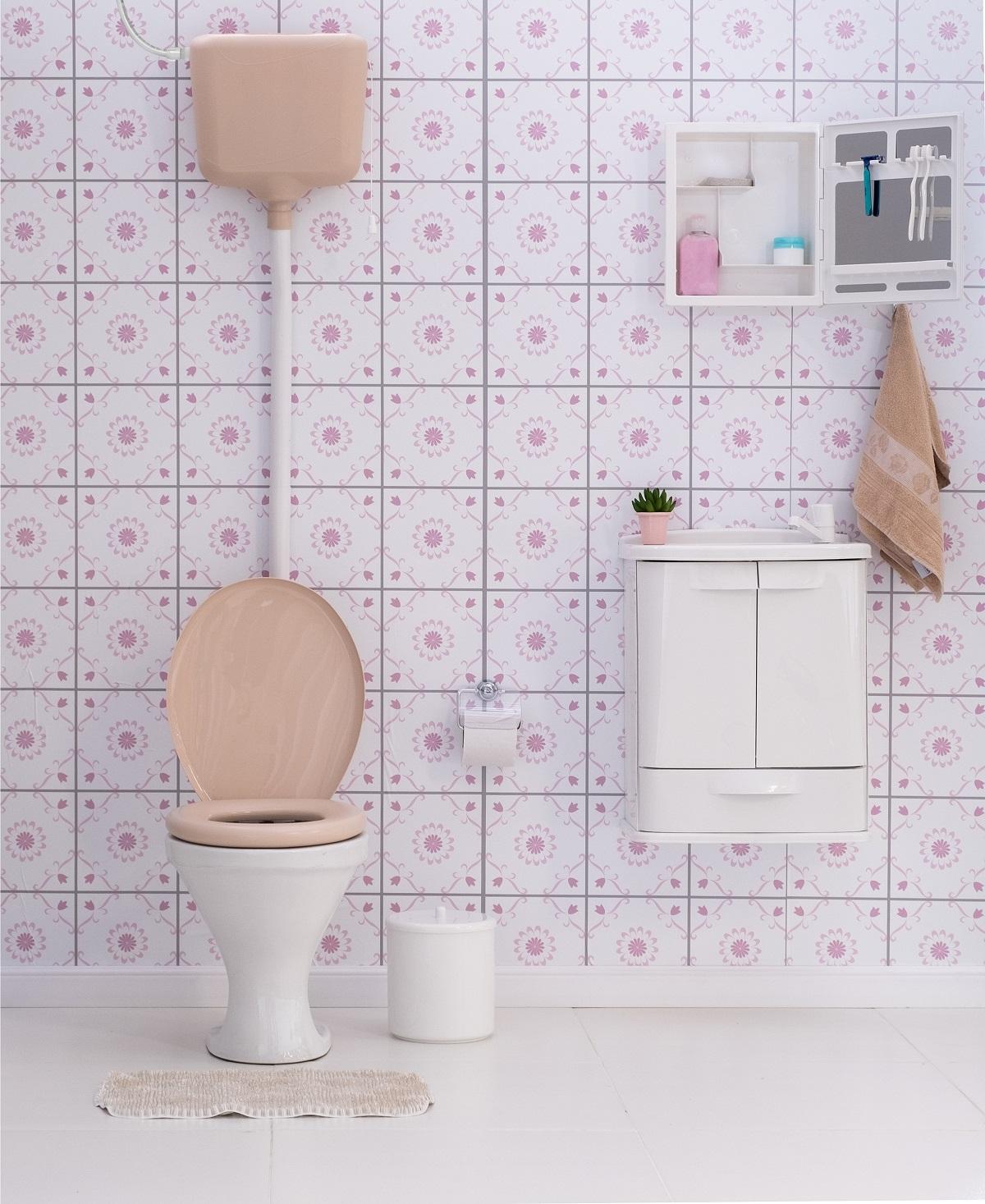 Banheiro - Caixa de descarga elevada - Modelo 01